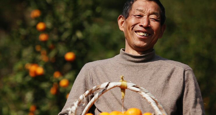 Li Mingda, PD Patient, achieved his dream of planting a tangerine plantation